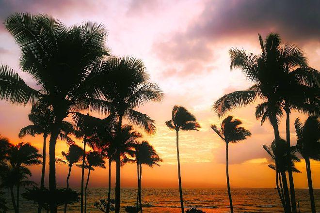 Mauna Lani Sea Adventures, Puako, United States