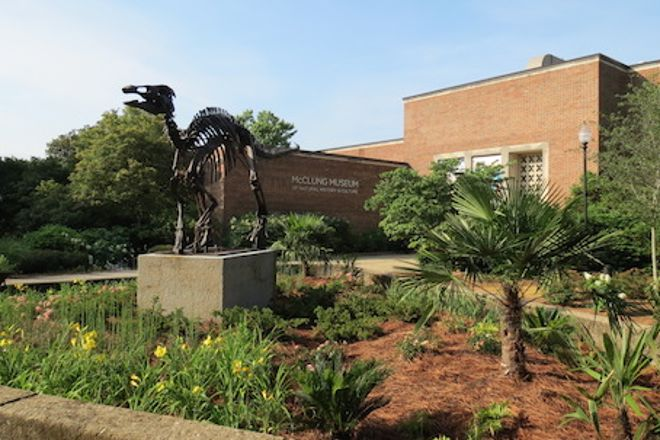 McClung Museum of Natural History and Culture, Knoxville, United States