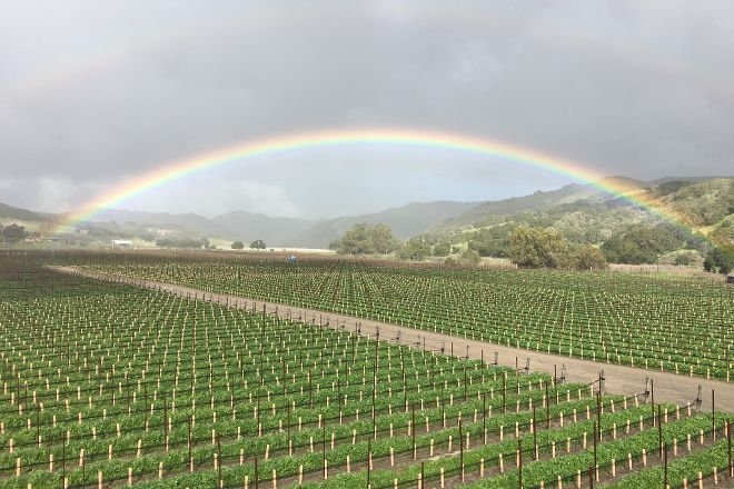 Melville Winery, Lompoc, United States