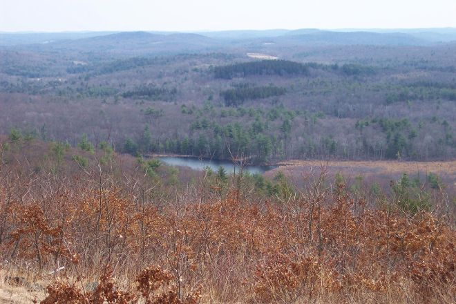 Mohawk State Forest, Cornwall, United States