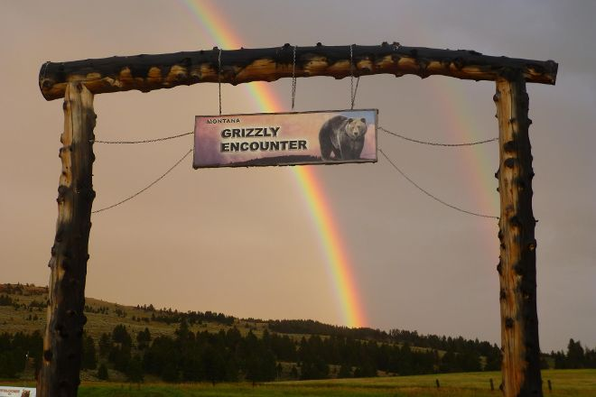 Montana Grizzly Encounter, Bozeman, United States