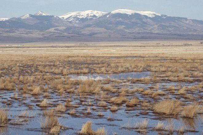 Monte Vista National Wildlife Refuge, Monte Vista, United States