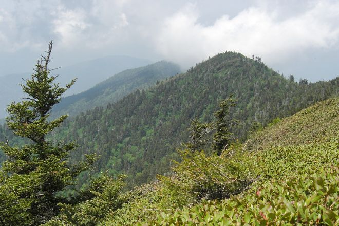 Mount LeConte, Great Smoky Mountains National Park, United States