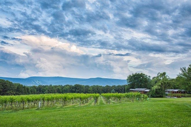 Mount Nittany Vineyard & Winery, Centre Hall, United States