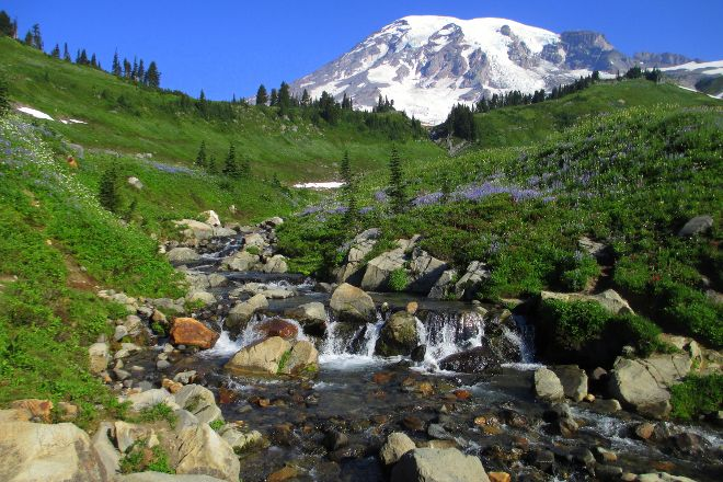 Mount Rainier, Mount Rainier National Park, United States