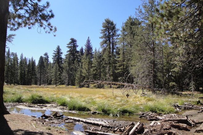 Mount San Jacinto State Park and Wilderness, Idyllwild, United States