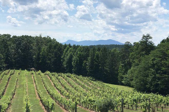 Mountain Brook Vineyards, Tryon, United States
