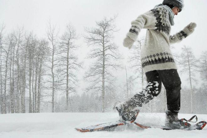 Mountain Meadows Cross Country Ski and Snowshoe Center, Killington, United States