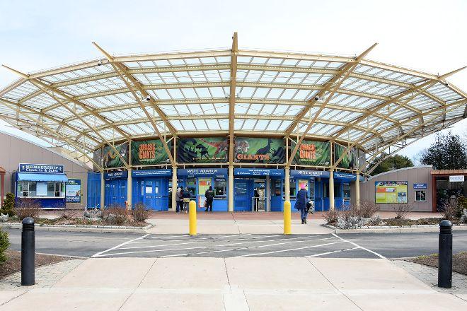Mystic Aquarium, Mystic, United States