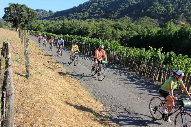 Napa Valley Bike Tours, Yountville, United States