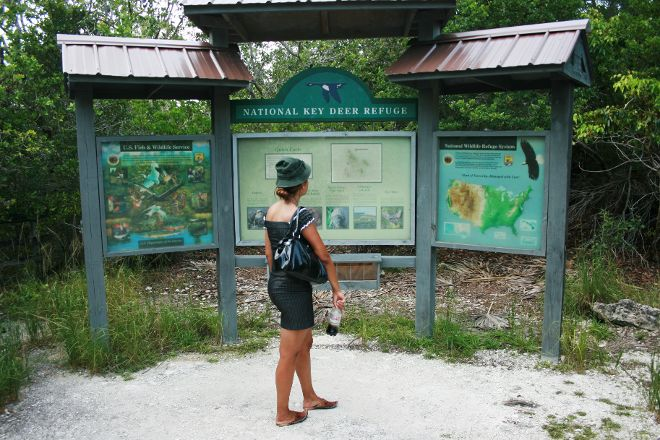 National Key Deer Refuge, Big Pine Key, United States
