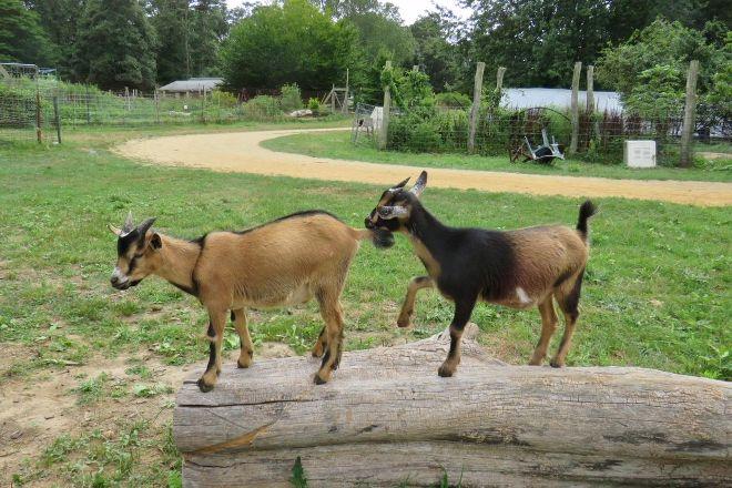 Native Earth Teaching Farm, Chilmark, United States
