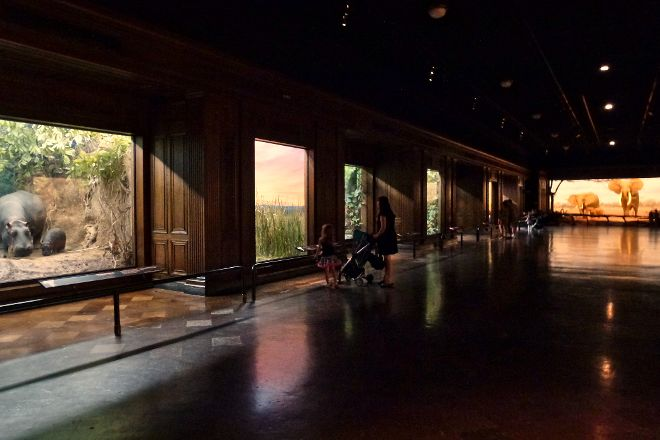 Natural History Museum of Los Angeles County, Los Angeles, United States