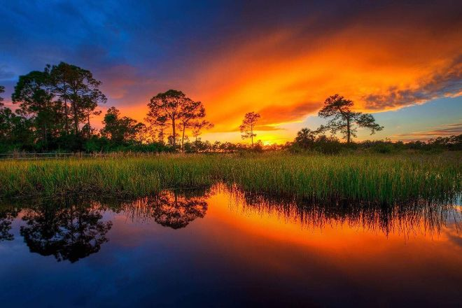Nature Coast Eco Tours, Homosassa, United States