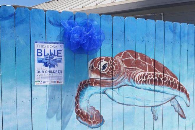Navarre Beach Sea Turtle Conservation Center, Navarre, United States