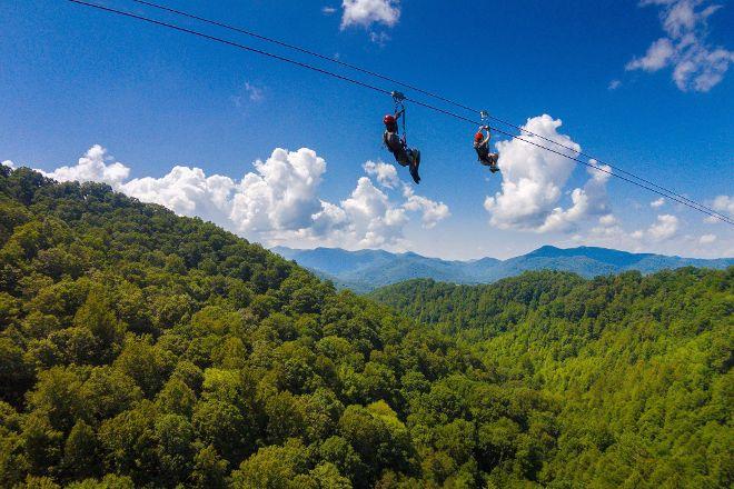 Navitat Canopy Adventures - Asheville Zipline, Barnardsville, United States