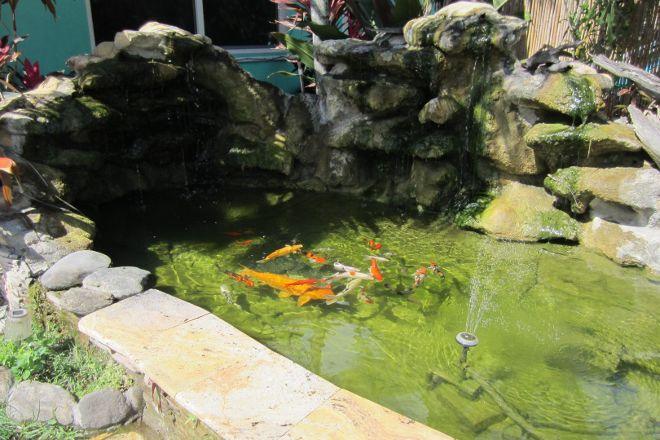 Neighborhood Fish Farm, Miami, United States