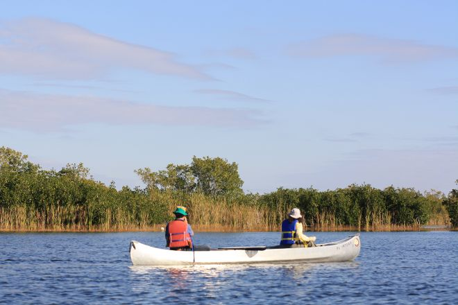 Nine Mile Pond Canoe Trail, Everglades National Park, United States