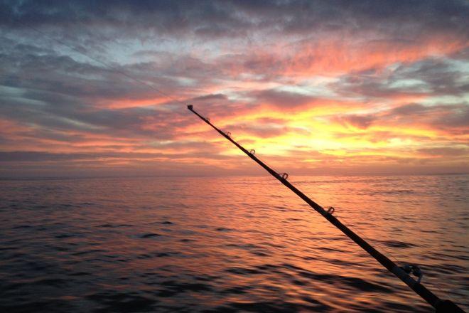 North Bay Charters, Bodega Bay, United States
