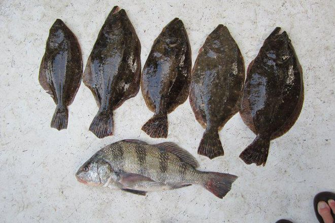 North Myrtle Beach Fishing Charters, Little River, United States
