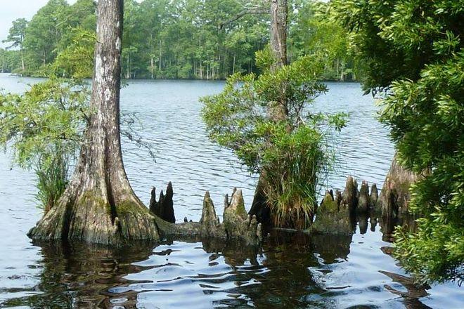 Northwest River Park, Chesapeake, United States
