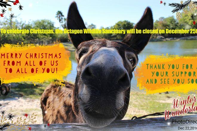 Octagon Wildlife Sanctuary And Rehabilitation Center, Punta Gorda, United States