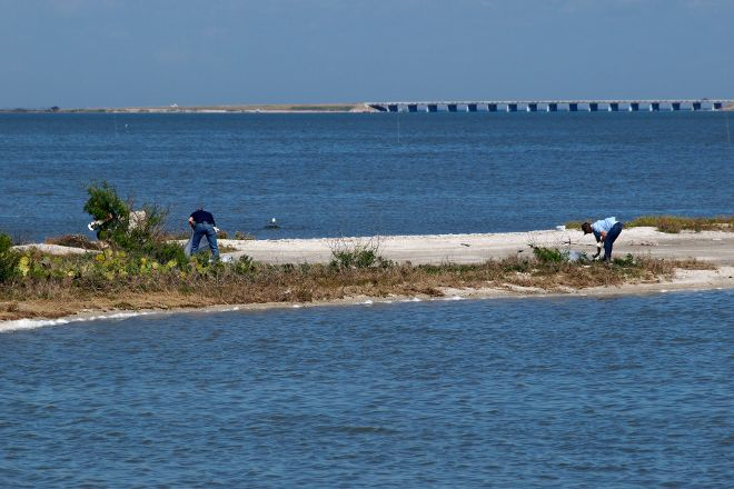 Oso Bay Wetlands Preserve & Learning Center, Corpus Christi, United States