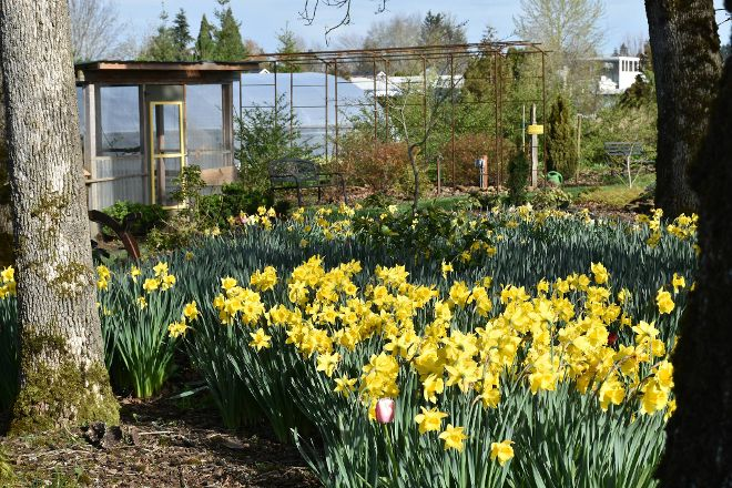 Out in the Garden Nursery, Molalla, United States