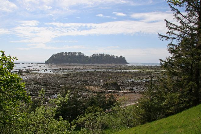 Ozette Loop Hike, Olympic National Park, United States