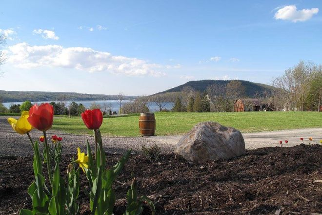 PALS Car Service and Wine Tours, Penn Yan, United States
