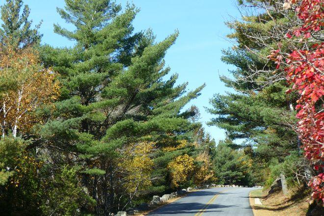 Park Loop Road, Acadia National Park, United States