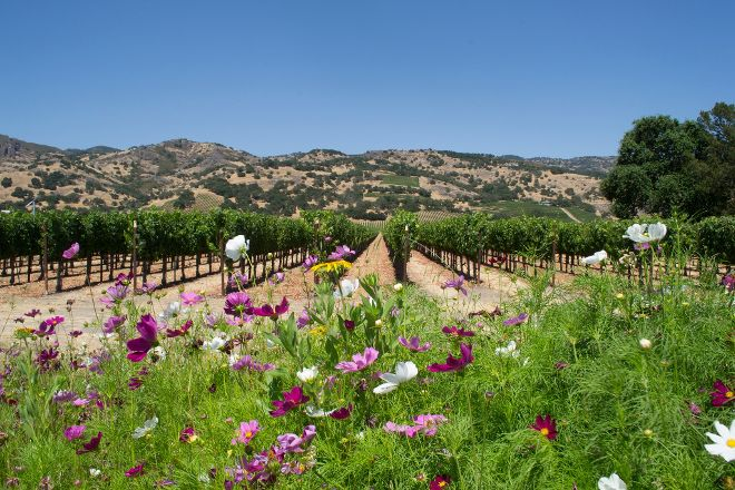Peace Water Winery, Carmel, United States