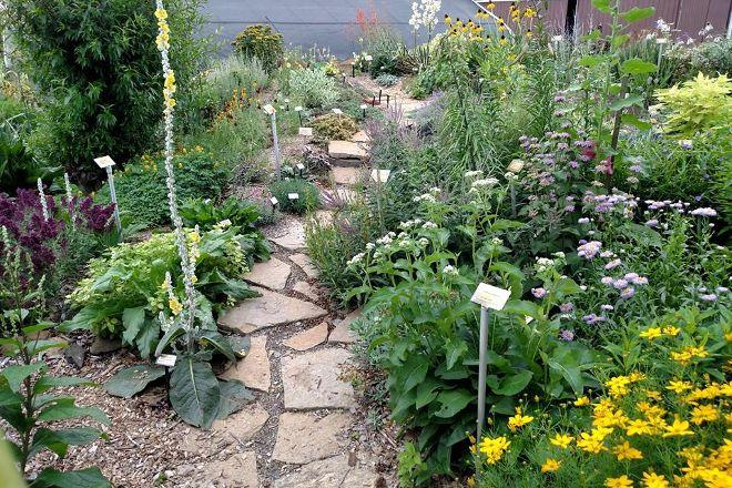 Perennial Plant Peddler, Findlay, United States