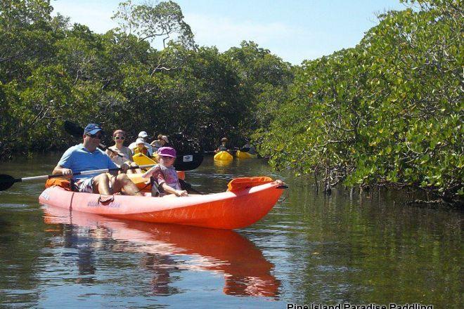Pine Island Paradise Paddling Day Tours, Saint James City, United States