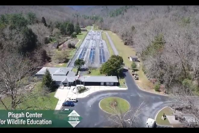 Pisgah Center for Wildlife Education, Pisgah Forest, United States