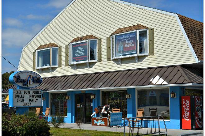 Pony Tails, Chincoteague Island, United States