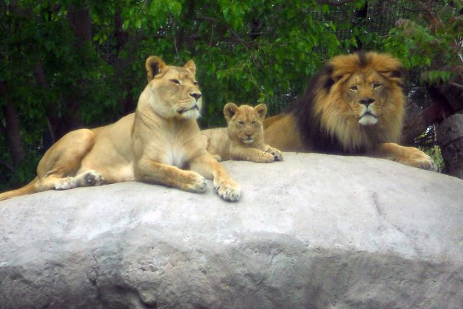 Pueblo Zoo, Pueblo, United States