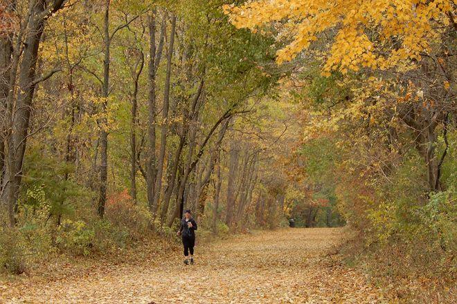 Pumpkinvine Nature Trail, Middlebury, United States