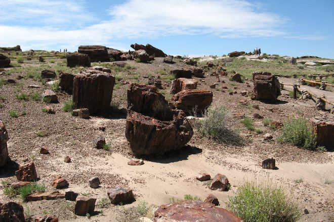 Rainbow Forest, Petrified Forest National Park, United States