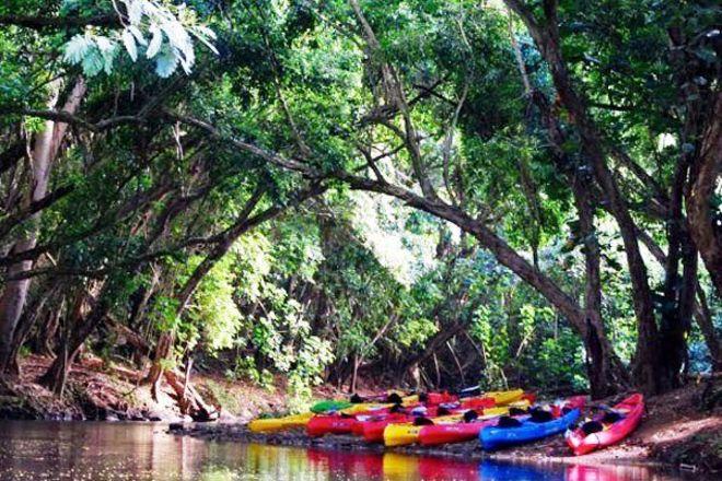 Rainbow Kayak Tours, Kapaa, United States