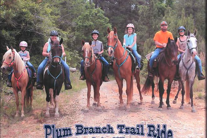 Rebel Ranch Horse Tours, Aiken, United States