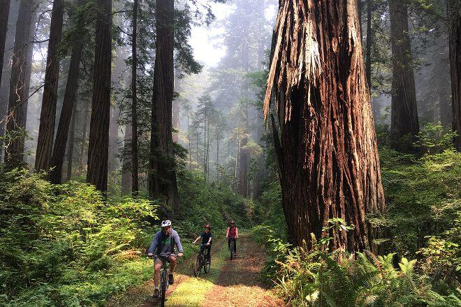 Redwood Rides, Hiouchi, United States