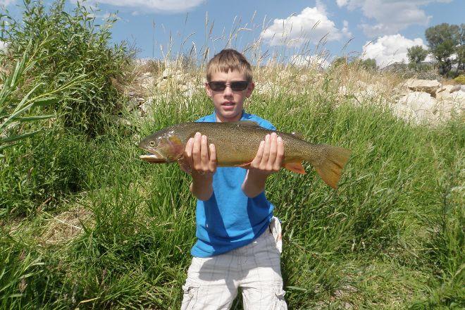 Reel Deal Anglers, Jackson, United States