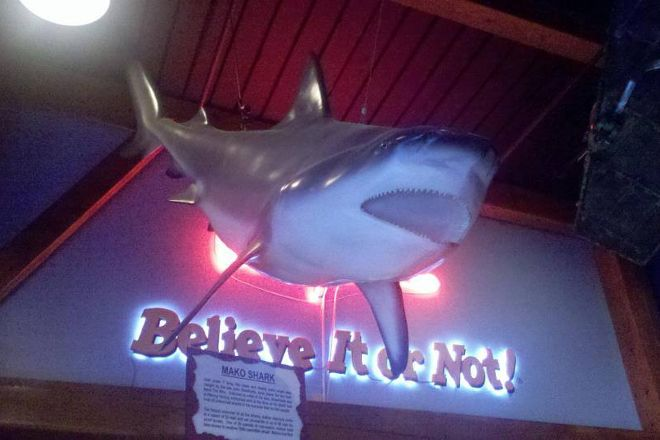 Ripley's Believe It or Not!, Williamsburg, United States