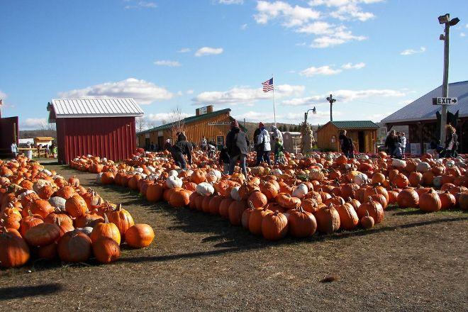 Roba Family Farms, Dalton, United States