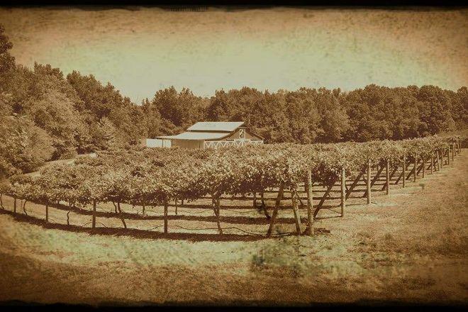 Rocky River Vineyards, Midland, United States