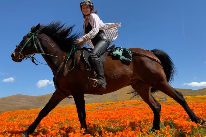 Running Horse Ranch, Lake Hughes, United States