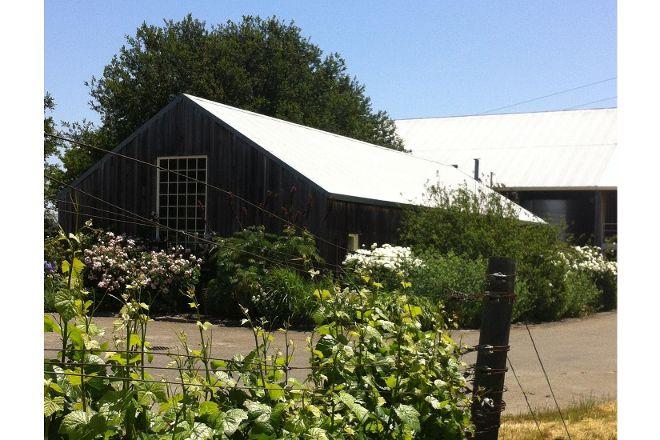 Saintsbury Winery, Napa, United States