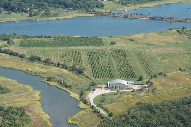 Saltwater Farm Vineyard, Stonington, United States