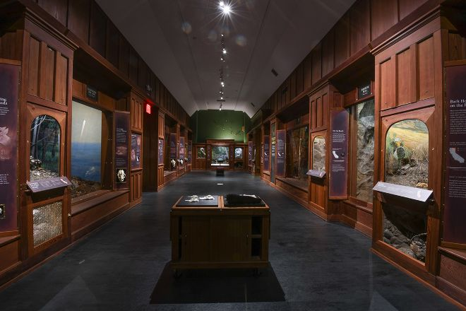 Santa Barbara Museum of Natural History, Santa Barbara, United States